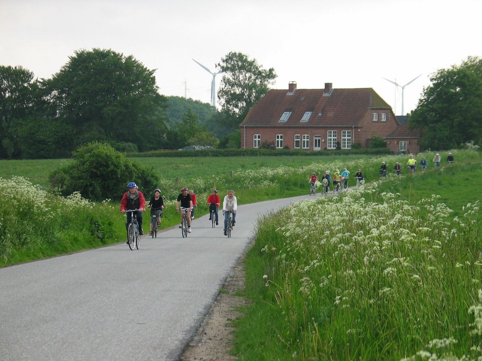 Påkørsler bagfra er årsag til flest alvorlige ulykker for cyklister på landeveje