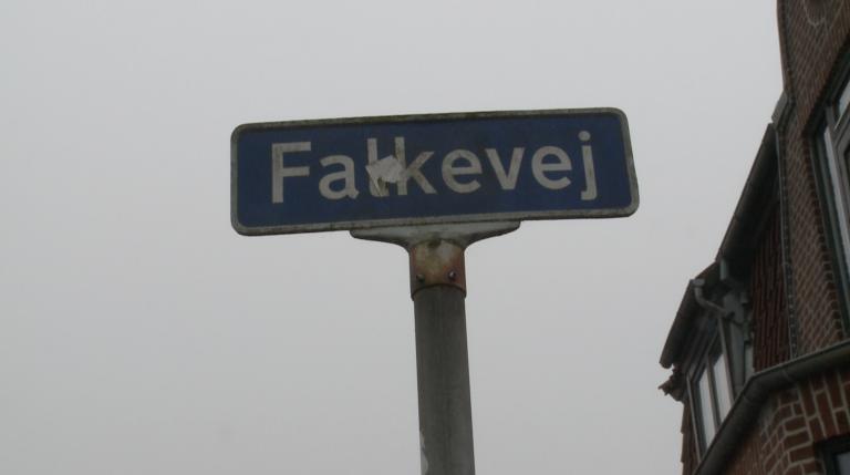 Skudepisode på Falkevej i Fredericia