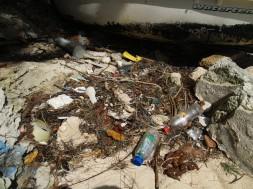 Bermuda_Bailyes-Bay_Claudia-Sick (31)
