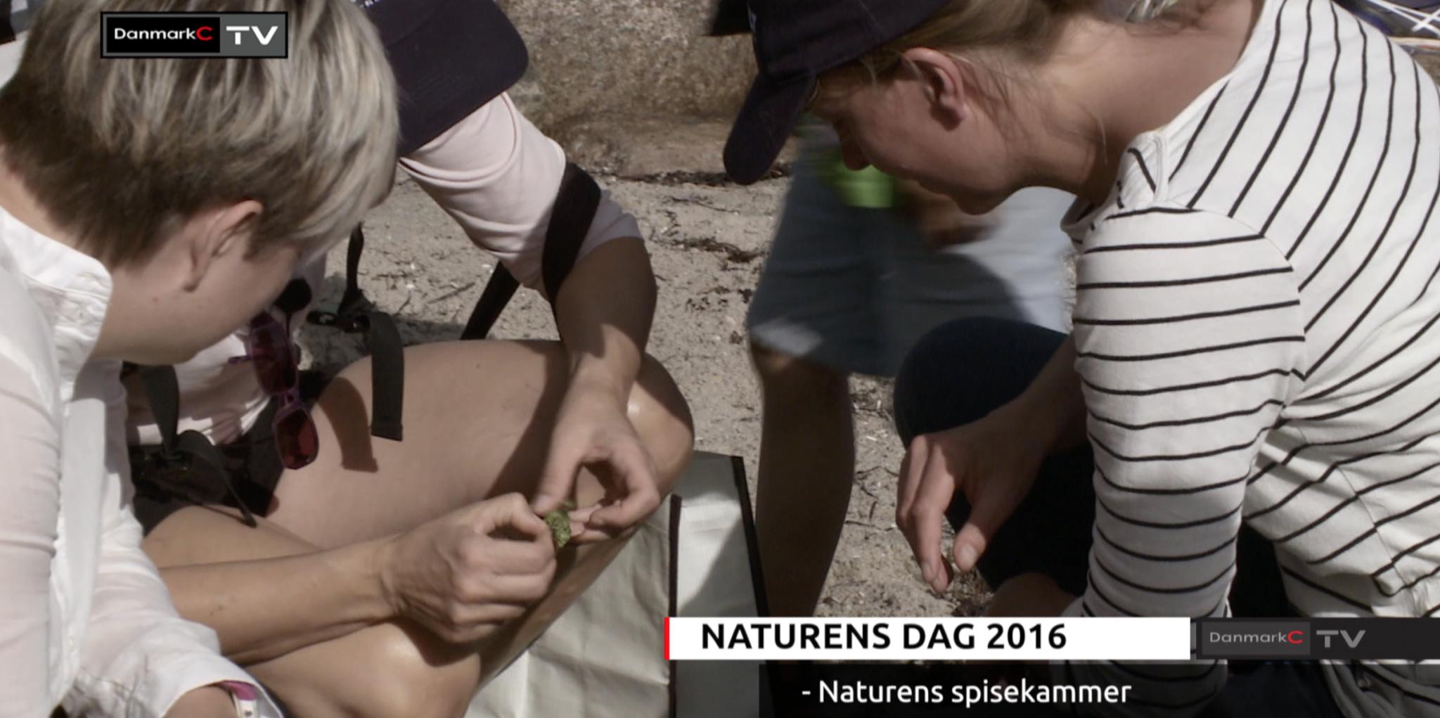 naturens-dag-naturens-spisekammer