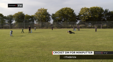 cricket-dm