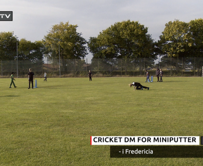 cricket-dm