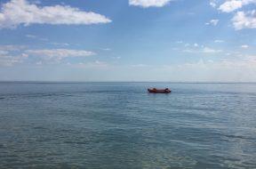 Tryk livredder østerstrand kystlivredder
