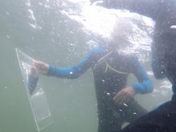 Trelde under vand snorkel