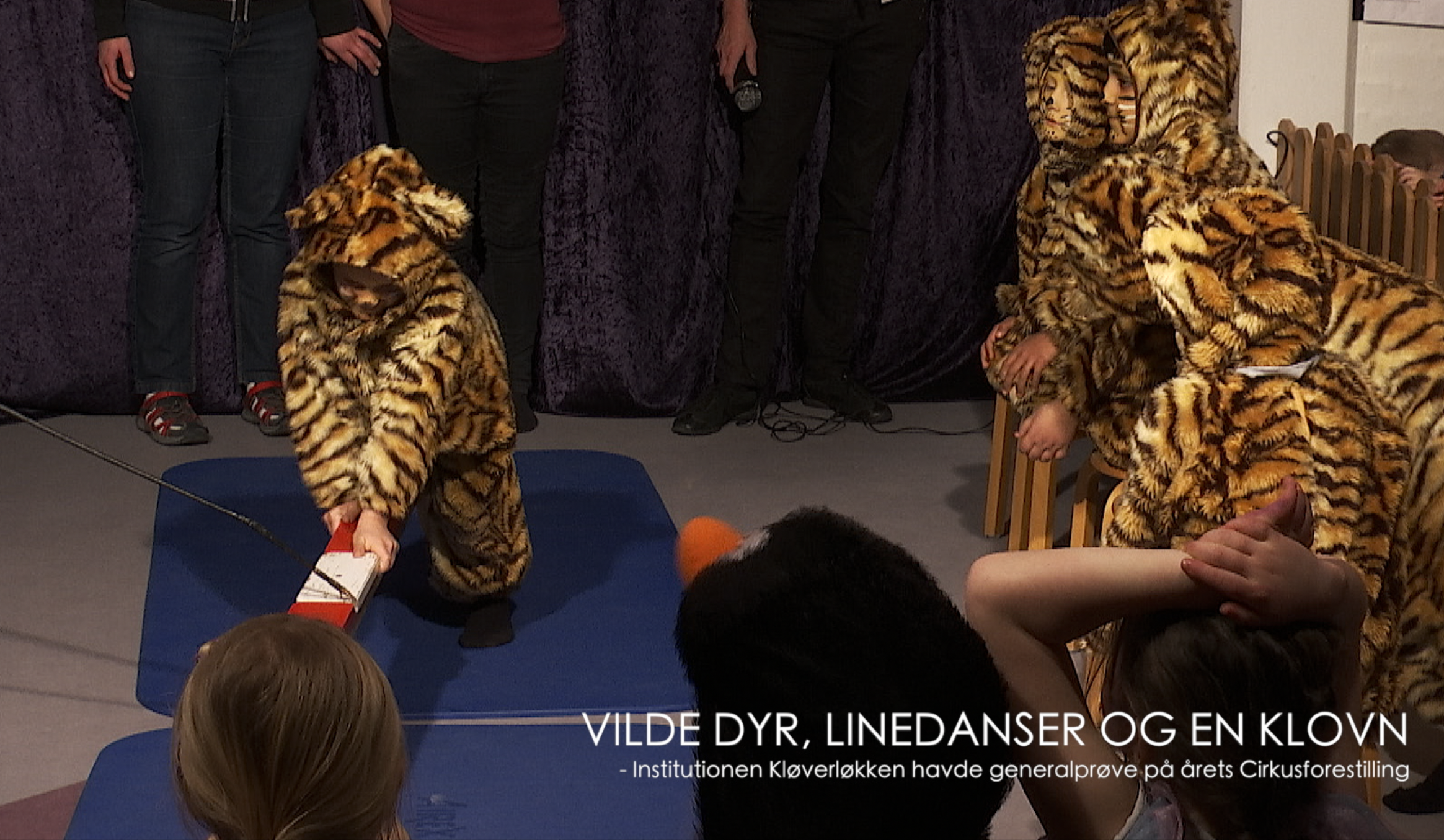 "SE VIDEO : KLØVERLØKKEN ""CIRKUS 2019"" – EN FORESTILLING MED VILDE DYR"